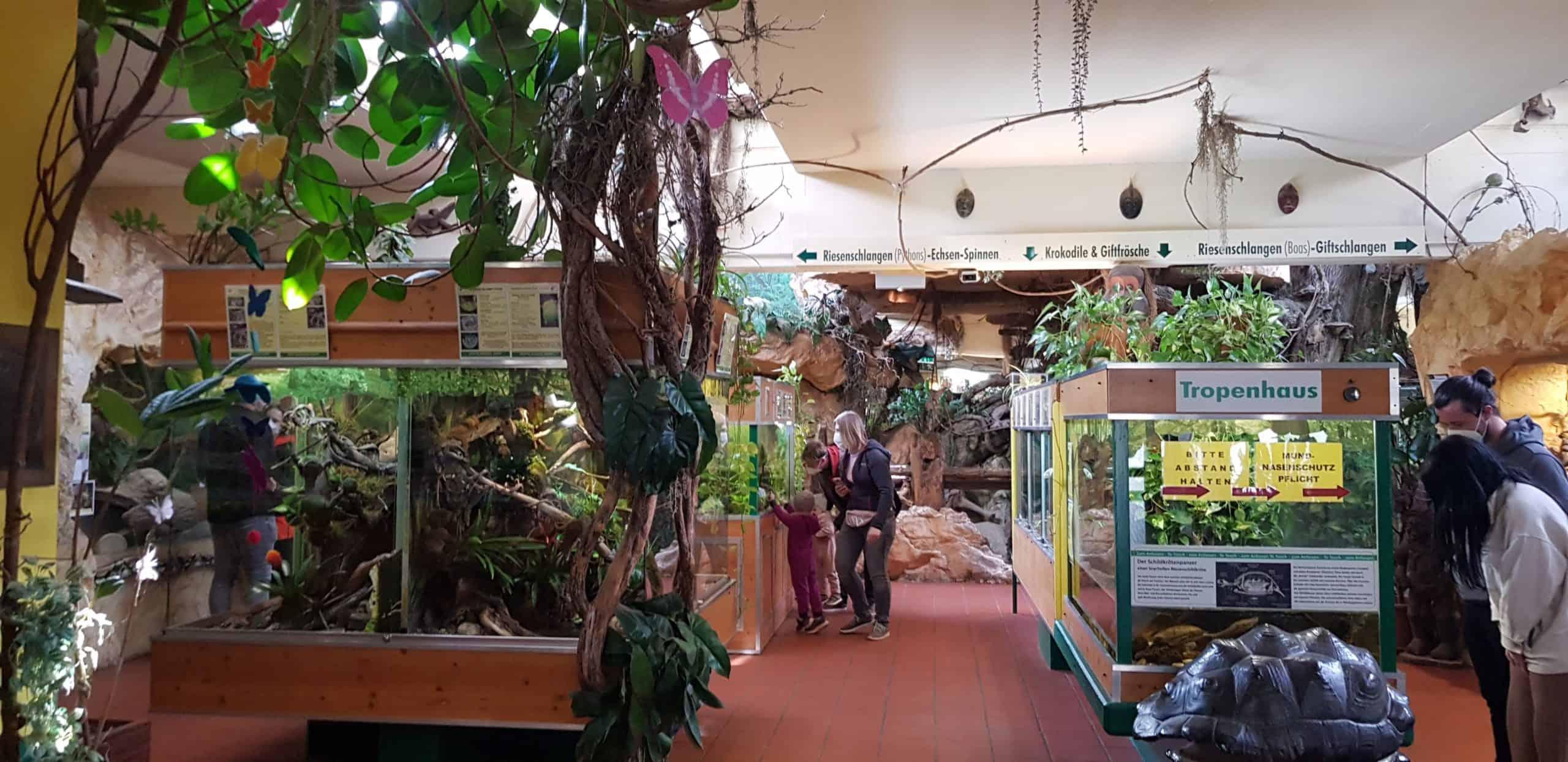 Indoor-Bereich Reptilienzoo Happ in Klagenfurt am Wörthersee