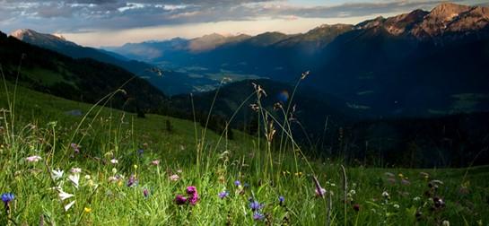 Wanderung auf die Mussen, Blumen- & Wanderparadies im Lesachtal - Kärnten