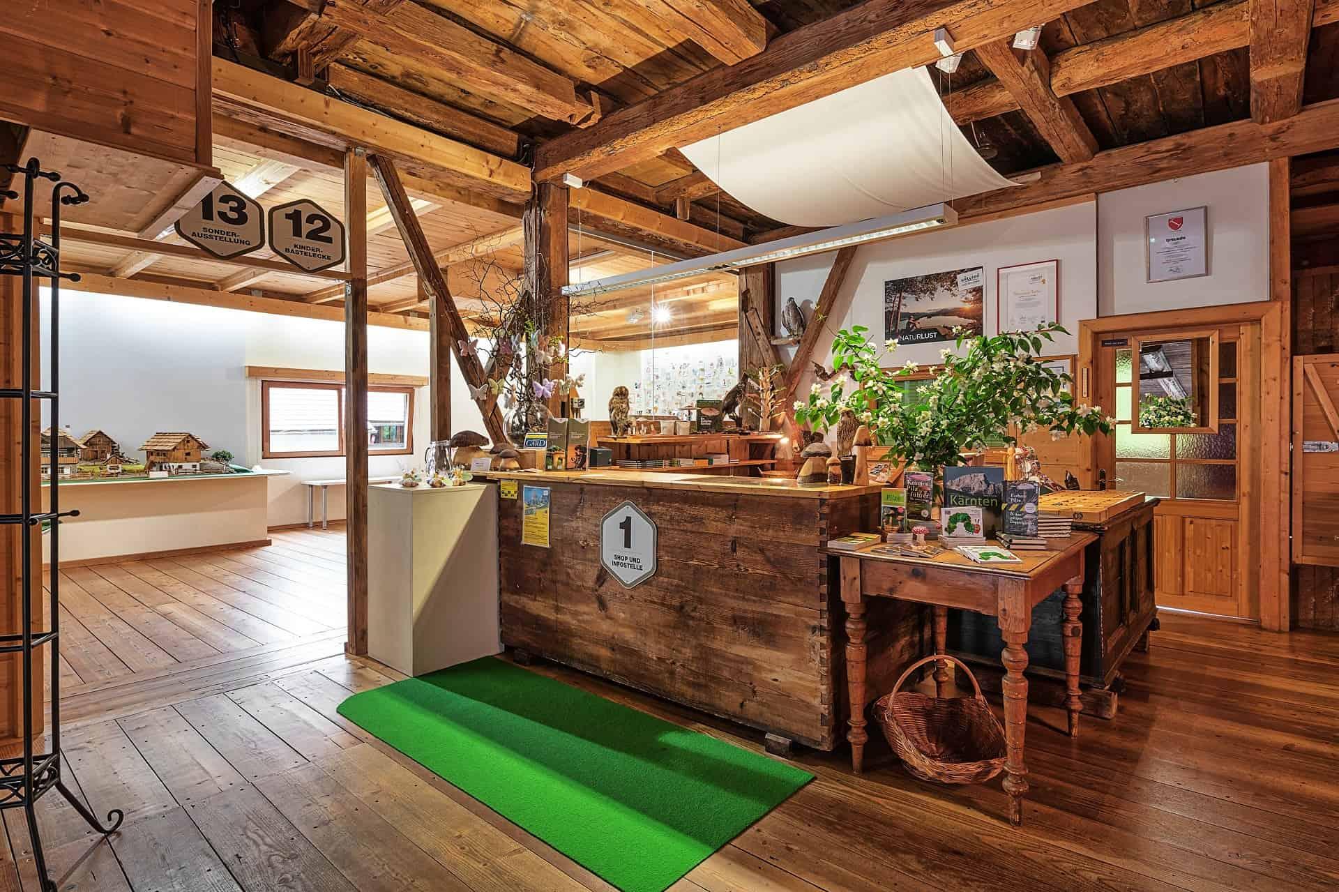 Pilzmuseum in Treffen bei Villach - Ausflugstipp für Familien in Kärnten