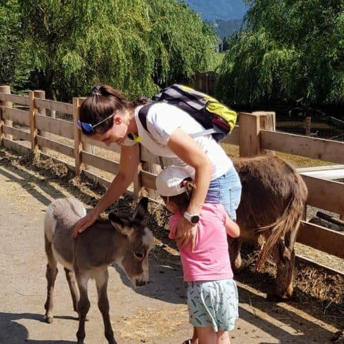 Mit Kindern im Eselpark Maltatal in Kärnten - auch für kleine Kinder geeignet