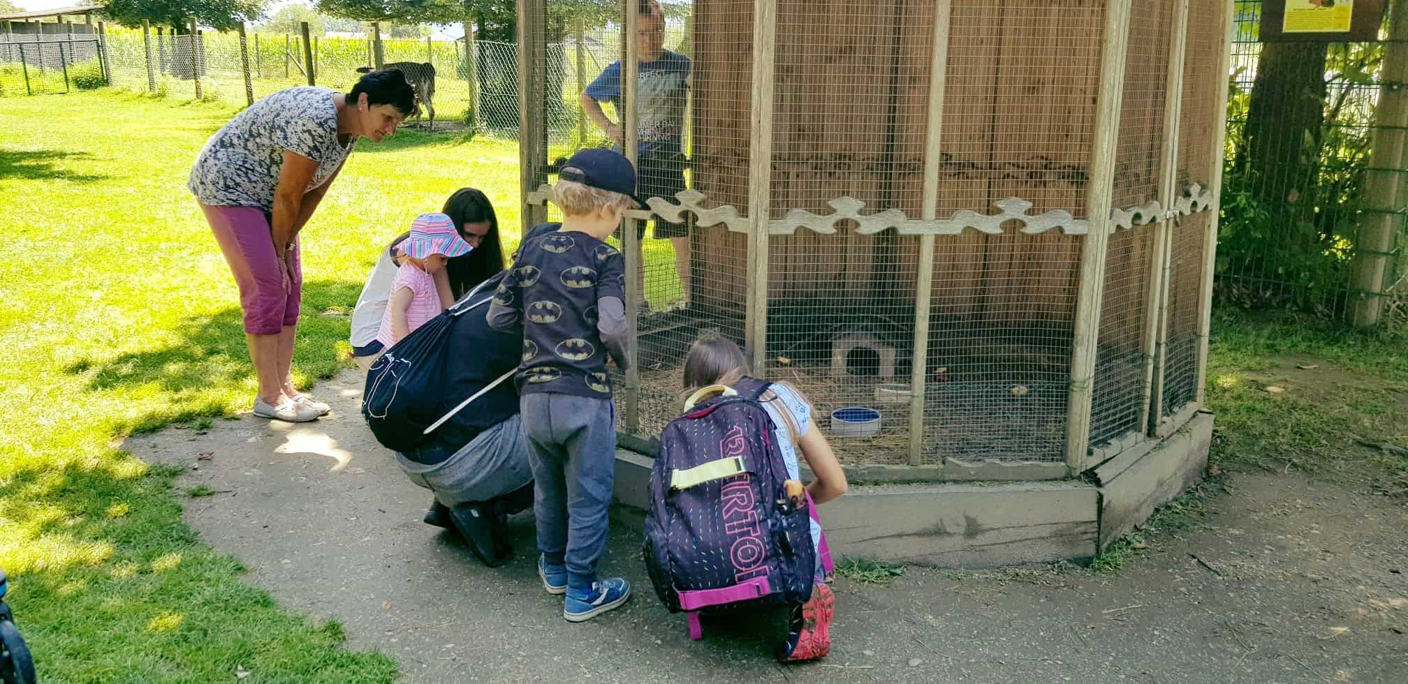 Familie im Streichelzoo im Tierpark Rosegg im Rosental, Kärnten