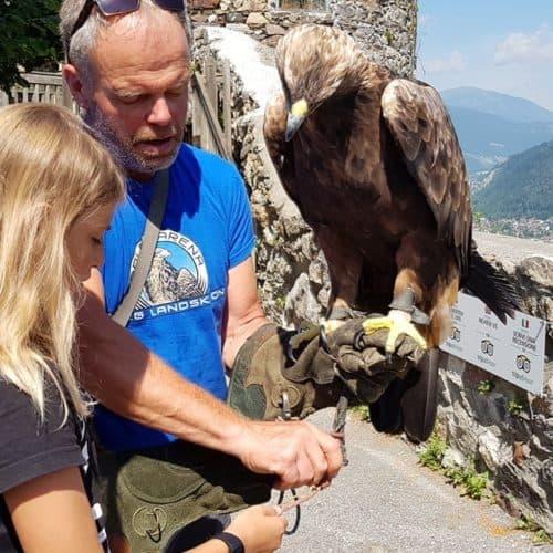 Kind bei Falknerworkshop für Familien auf Burg Landskron - Adler- & Greifvogelwarte bei Villach in Kärnten, Österreich